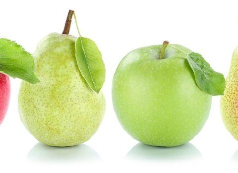 Instrumenten voor kwaliteitsborging als appels en peren